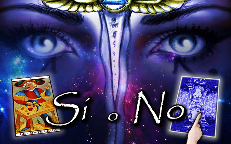 siono-new-1